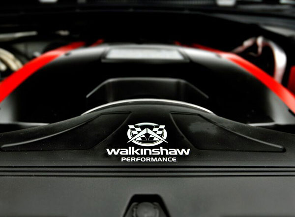 Walkinshaw Performance W375 PACKAGE